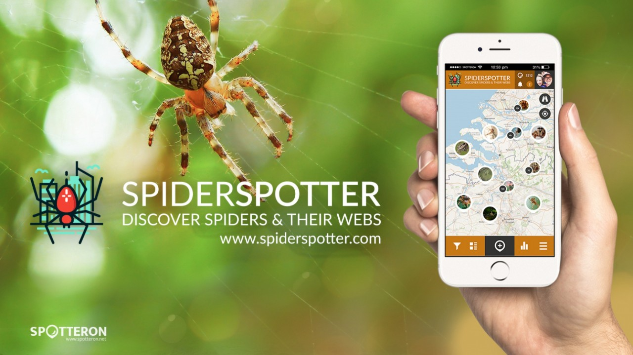 Introducing the Citizen Science Apps: SpiderSpotter