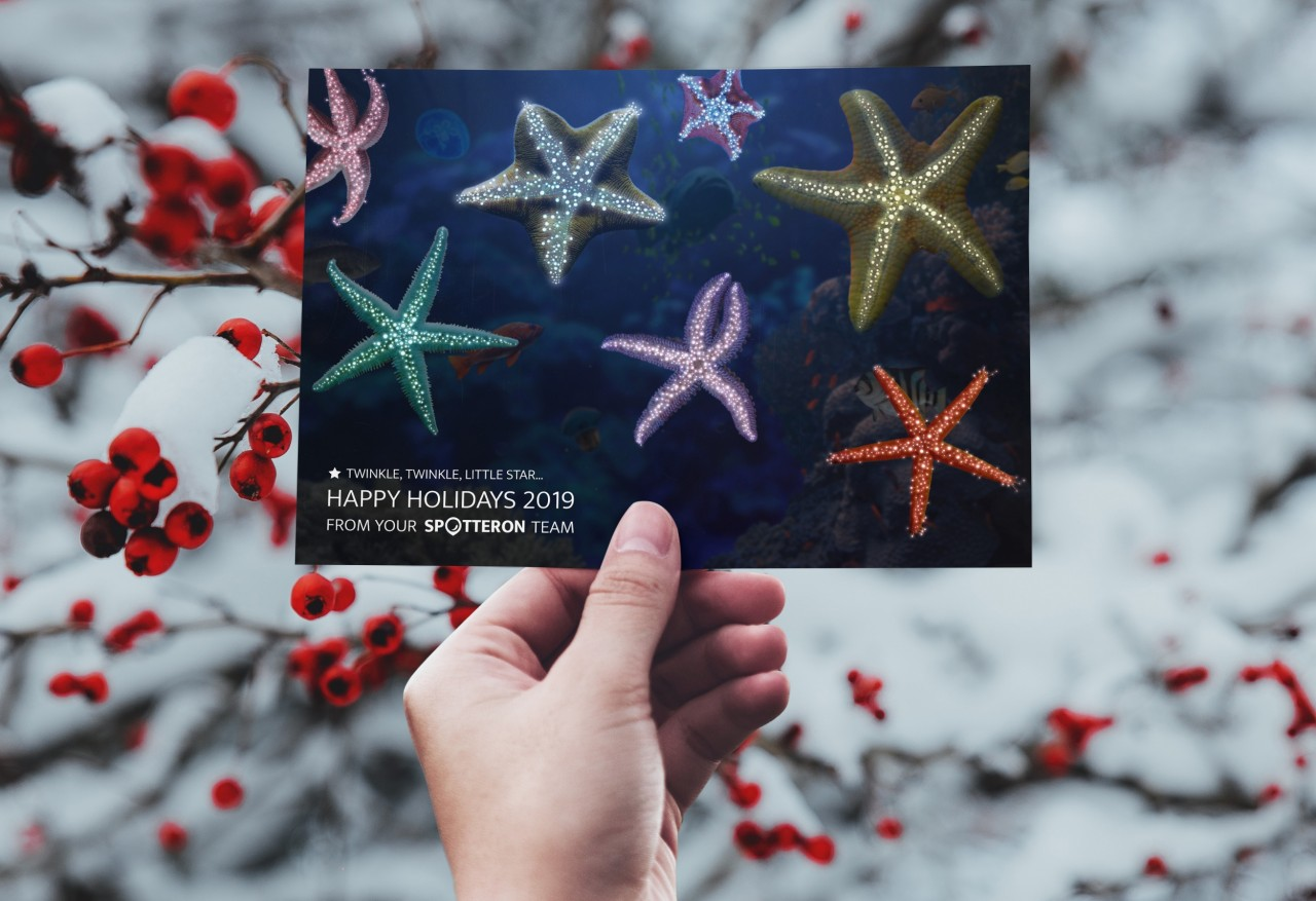 A starry Citizen Science holiday card
