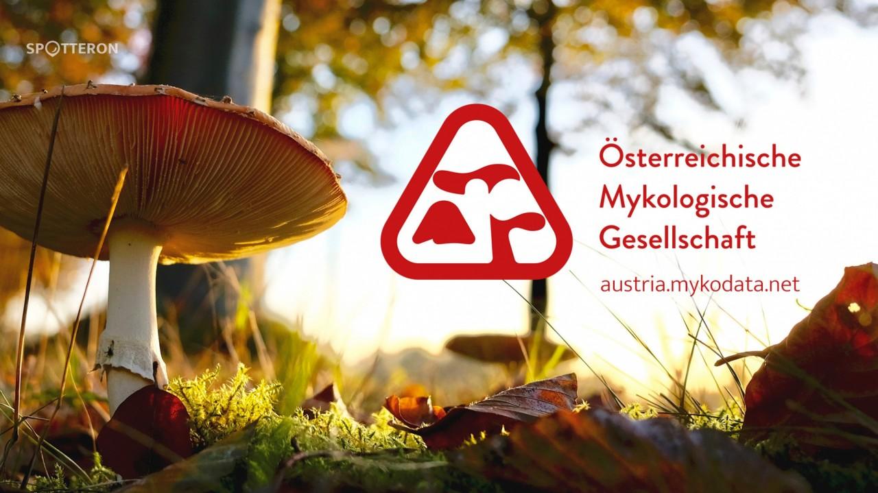 Let's meet Citizen Science! Episode 2 - Austrian Mycological Society ÖMG